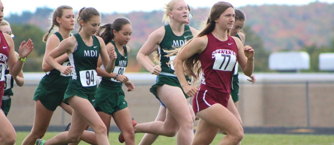 County meet prepares top runners for championship season